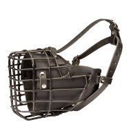 American Bulldog Muzzle Rubberized and Leather-Lined